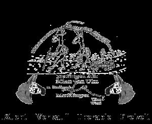 Alb-Lamas Nellingen Logo